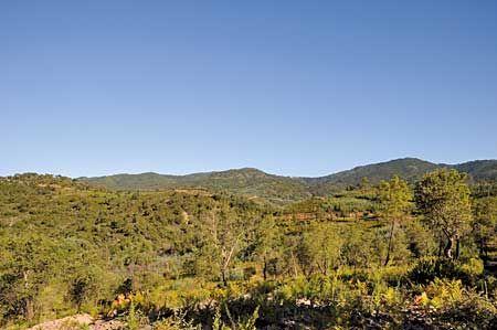 Le massif du Tanneron