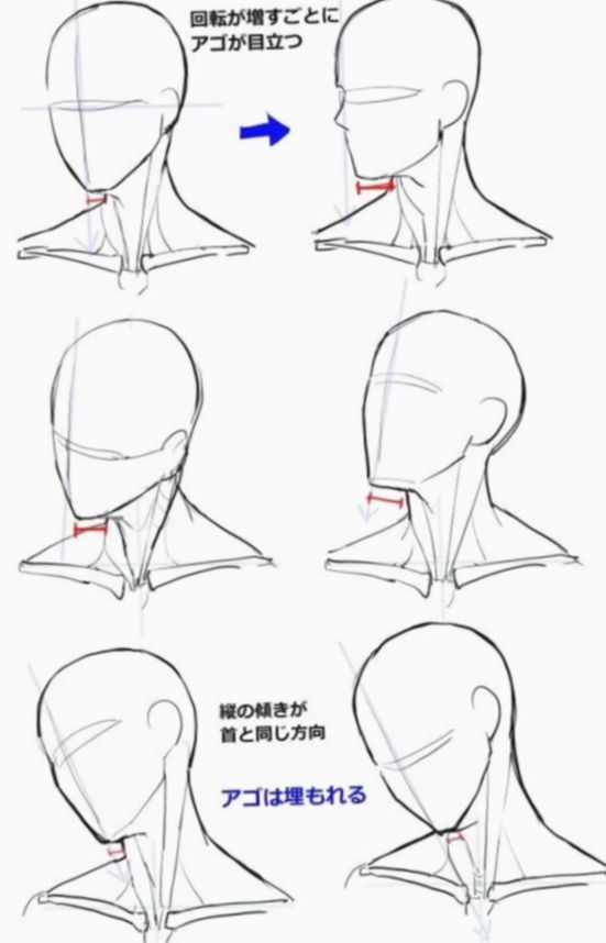 8 Anime Face Sketch Anatomy Face Drawing Reference Sketches Tutorial Face Drawing