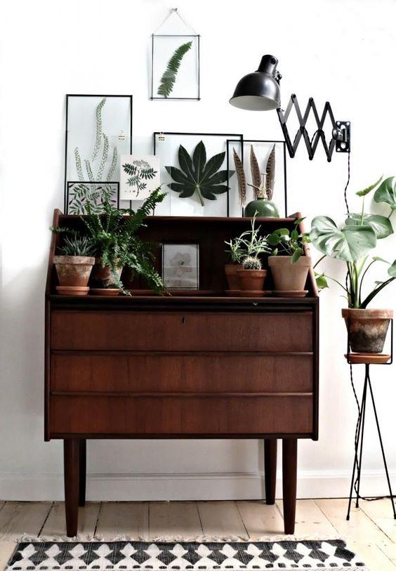 Entrée vintage avec vieux meuble en bois foncé, plantes vertes, lampe industrielle, herbier au mur