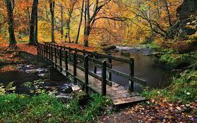 Image result for landscape photography autumn