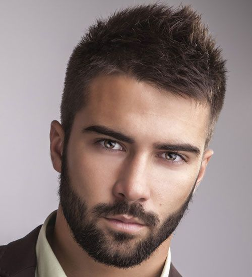 Hairstyles For Men with Beards - Professional Beard: