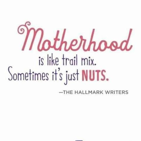 'Motherhood' is quite obviously true, yet can be replaced with the appropriate noun at any time, in any situation.