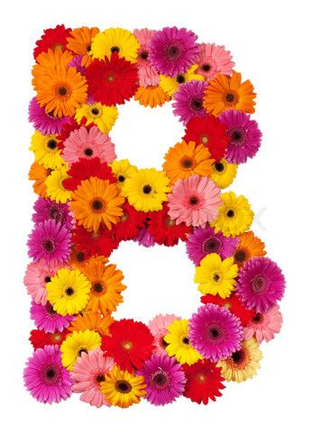 S Alphabet In Flowers Stock image of 'Letter B - flower alphabet isolated on white ...