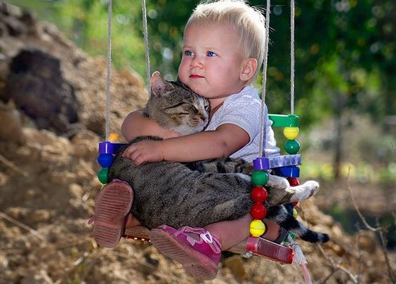 Baby holding a cat in a swing