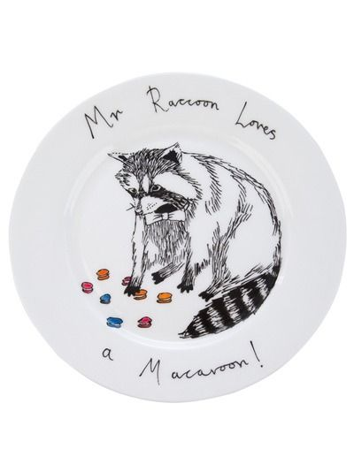 Mr Raccoon