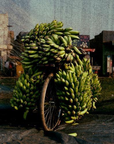 bananas overloaded bike