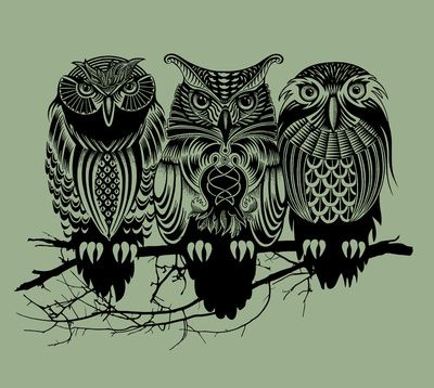 Owls of the Nile by Rachel Caldwell, contrasting print black owls against a green background owls are almost totems in their decorative manner