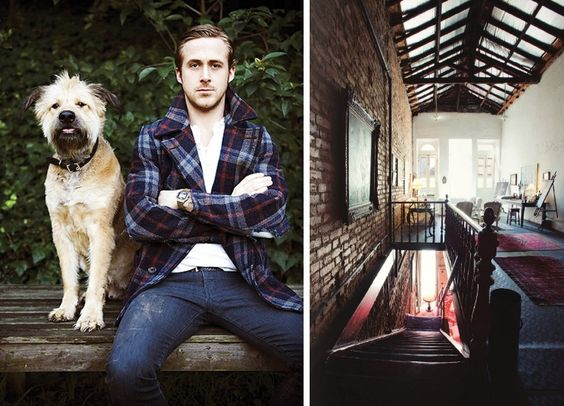 Great room, especially if it comes with Ryan Gosling and his cute dog.