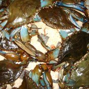 Lighthouse Seafood - Lake Mary, FL