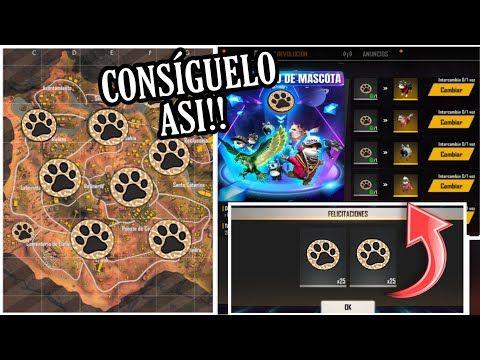 Cómo Conseguir Token De Huella De Perro En Free Fire Como Reclamar Las Mascotas En Free Fire Youtube In 2020 Free Fire The Creator