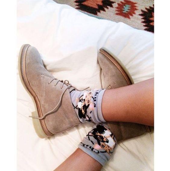 Dallas Shaw Instagram { Trend alert: chihuahua socks } #liketkit www.liketk.it/r15u @liketkit: