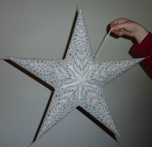 Christmas, Wedding & Diwali 5 Point Paper Star Lampshade White or Red Paisley | eBay
