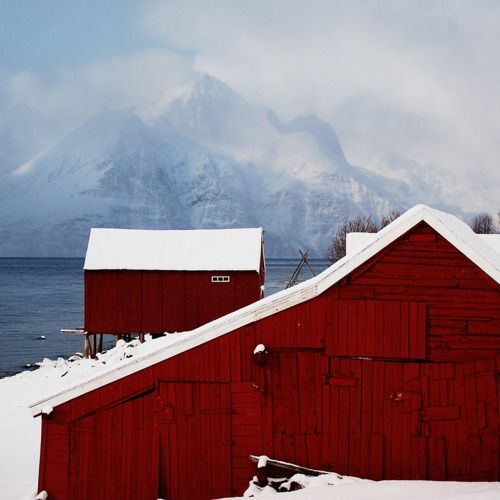 beautiful red barn in a beautiful setting