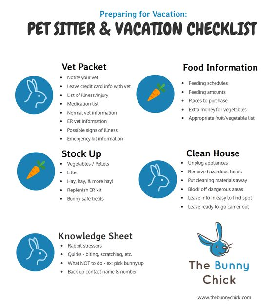 Make sure your rabbit & pet sitter are both prepared for your vacation by checking off all the important to-do items in our Pet Sitter & Vacation Checklist!