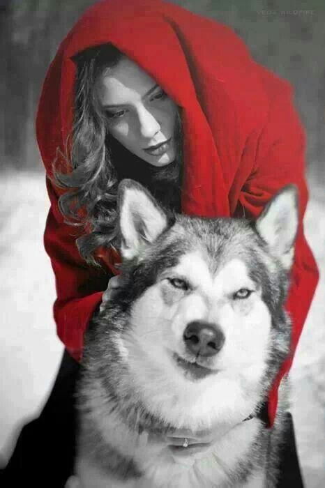 "Cappuccetto Rosso,variante:grande amicizia tra ""la bella e la bestia""  ................................Little Red Riding Hood, variant: great friendship between 'beauty and the beast'"