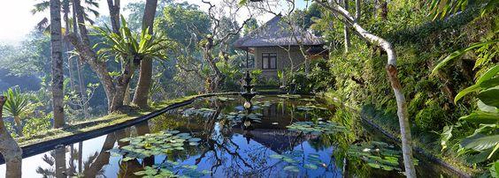 Hotel Tjamphuhan - Ubud Indonesia 4 nights for £215