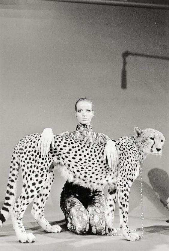 Veruschka and cheetah