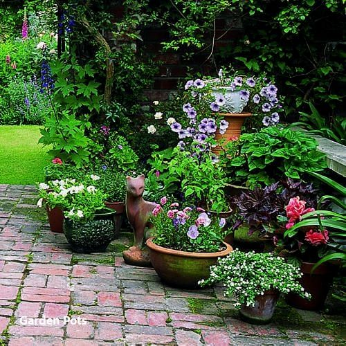 Pin By Rhonda Sherman On Gardening Container Herb Garden