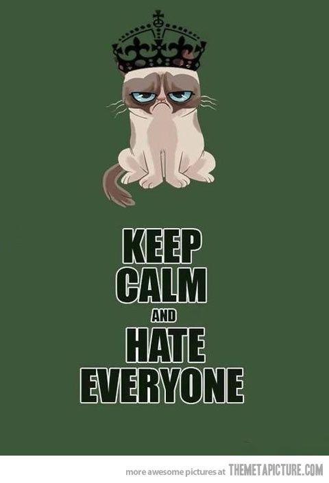 Keep grumpying…. Grumpy Cat #GrumpyCat #Humor #Meme