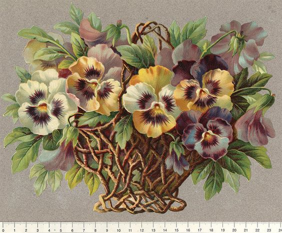Pansies in basket...: