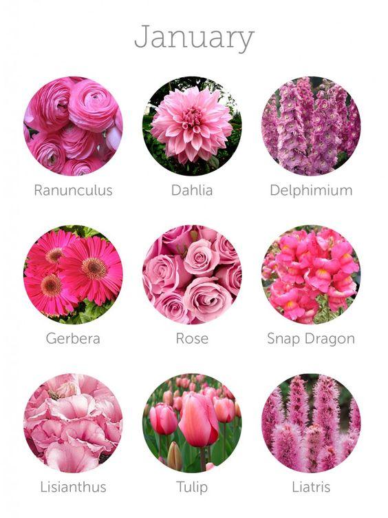 Wedding budget tip 16 choose in season flowers seasons for Flowers that are in season
