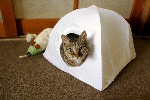 Tシャツと針金ハンガーで猫がよろこぶテントが手作りできる ということで作ってみました 襟ぐりの部分を入り口として活用 猫用テントとして紹介されてますが 犬もよろこぶかも 海外サイトで Cat 猫 テント 猫用テント 猫 ハンモック 手作り