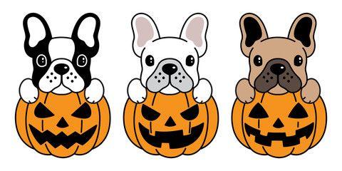 Dog Vector French Bulldog Pumpkin Halloween Icon Logo Illustration Symbol Cartoon Bulldog Cartoon French Bulldog Cartoon Dog Vector