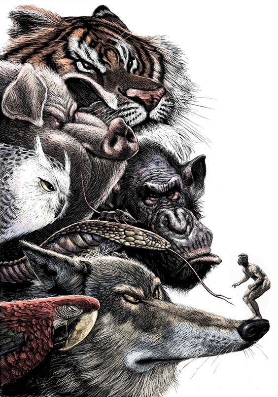 Incríveis ilustras ultra detalhadas de animais caricatos, do espanhol Ricardo Martinez.:
