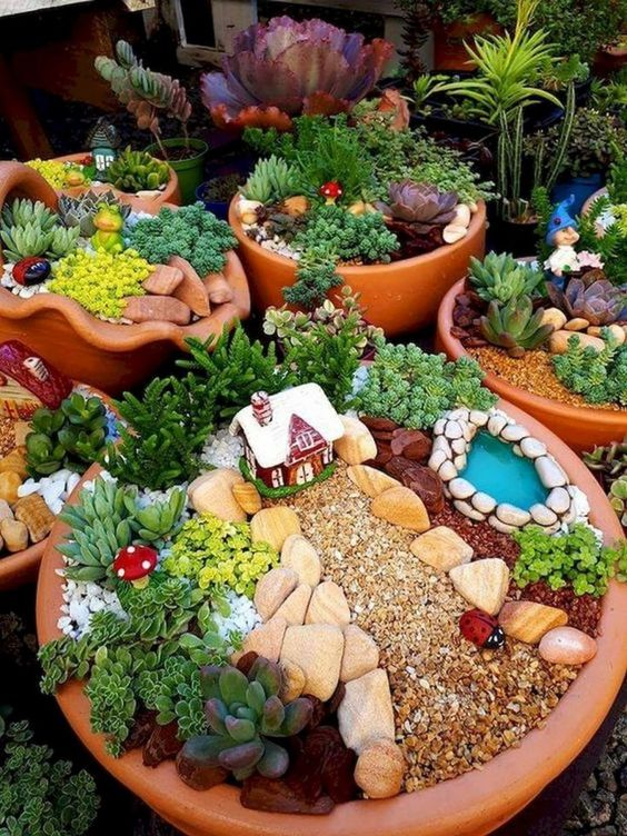 planters with succulent for a fairy tale design #gardenIdeas #garden #gardening #plants #homeDecor #indoor
