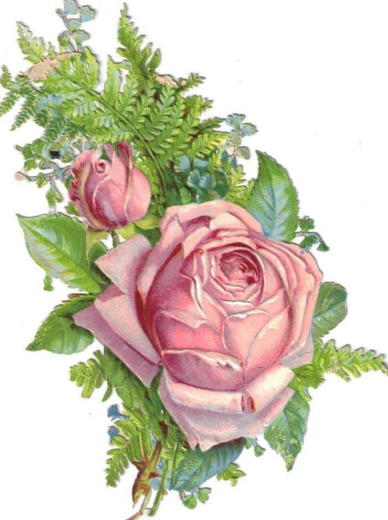 Larger Victorian Die Cut Scrap Pink Rose Bouquet c1880: