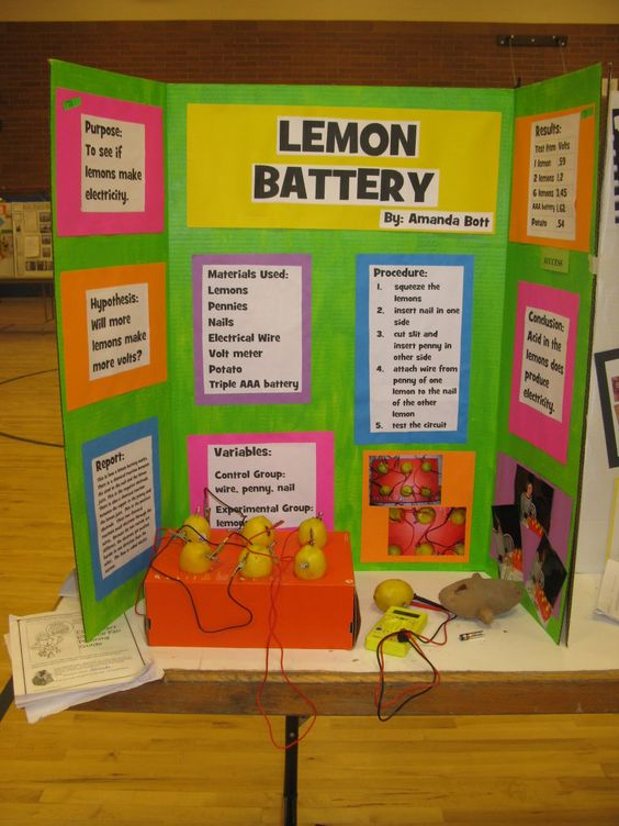 A science fair experiment is generally a competition where - science project report