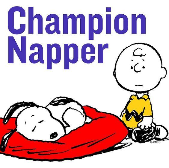 Champion napper!