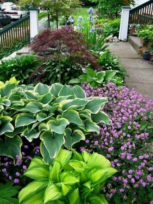 Zone 3 Garden Ideas