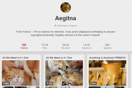(88) Aegitna en Pinterest