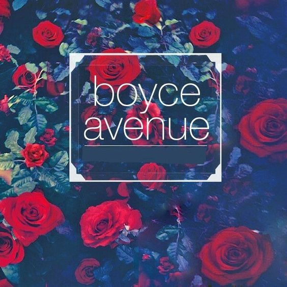 Boyce Avenue album cover
