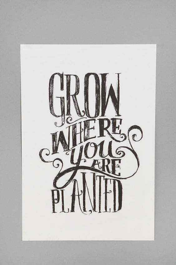 Matthew Taylor Wilson Grow Where You Are Planted Print
