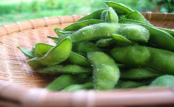 鮮度キープ【枝豆保存方法】ご紹介。レシピ7選で変身させちゃおう