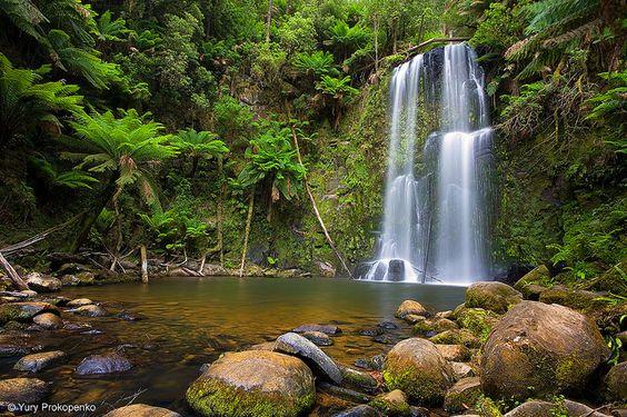 Beauchamp Falls    Beauchamp Falls, Great Otway national park, Victoria, Australia