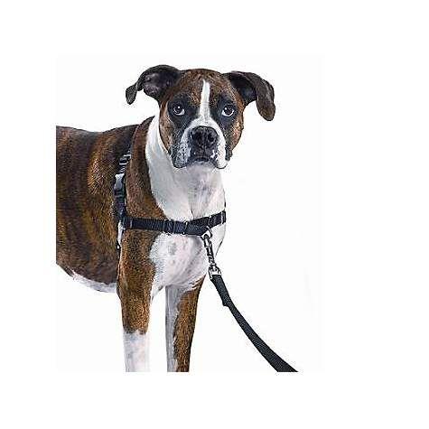 Petsafe Gentle Leader Easy Walk Harnesses For Dogs Gentle Leader Harness Collar Petco Com Easy Walk Harness Dog Harness Dogs