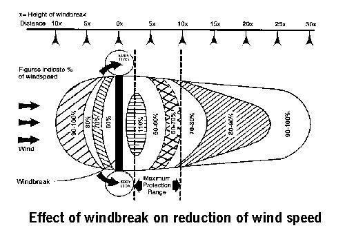 wind break diagram