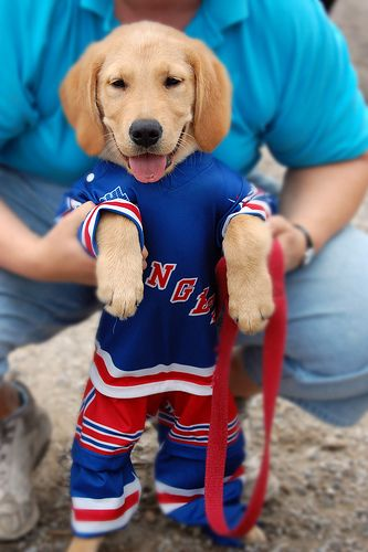 Cutest Thing Ever. #hockey @Kylie Hervey I expect charlie to have a bruins one in the next week!