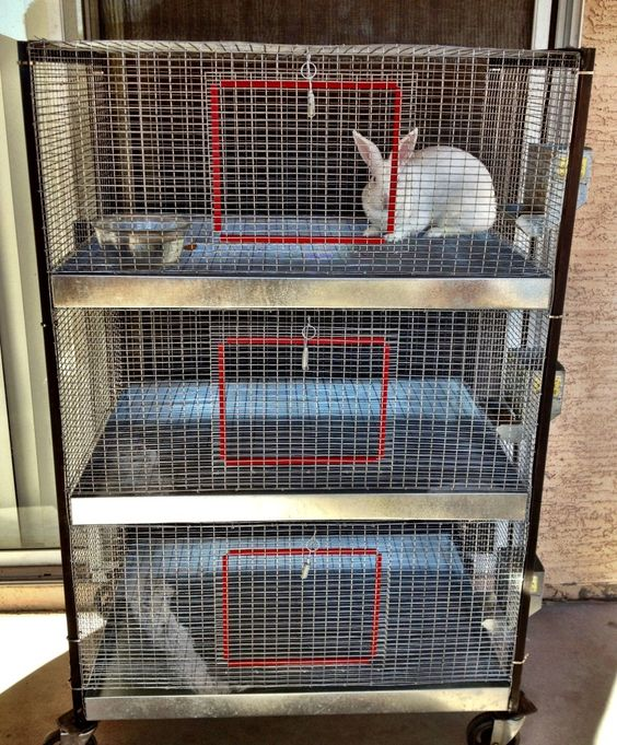 Posts rabbit cages and the o 39 jays on pinterest for How to make a rabbit hutch from scratch