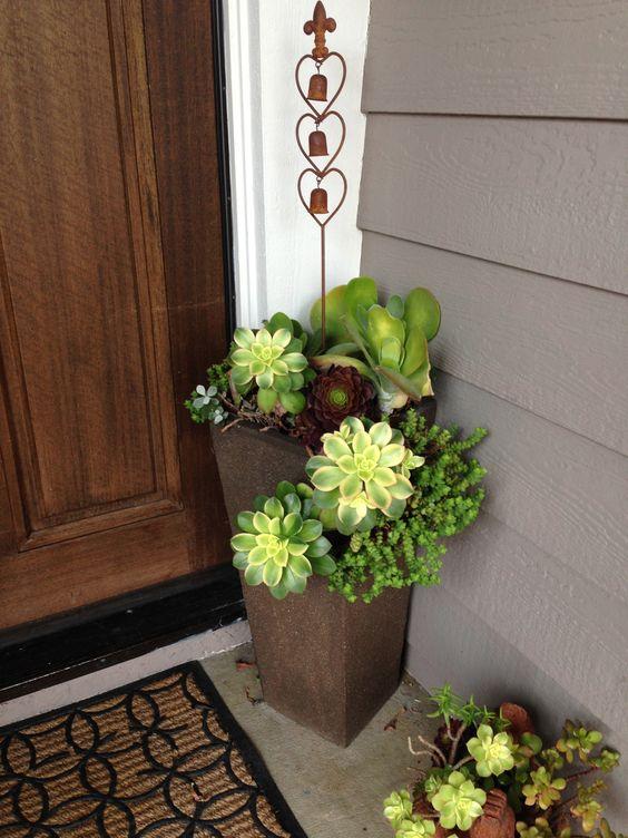 Succulent front door planters diy succulent landscaping for Potted plants by front door