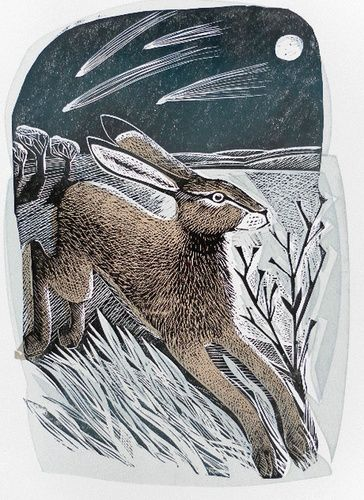 Hare & Moon by Angela Harding