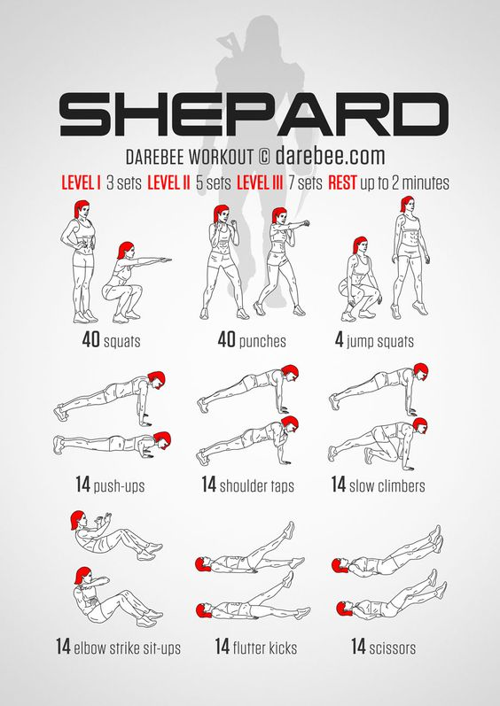 codenamecynic:  Shepard Workout fromDarbee.comASK AND YE SHALL RECEIVE! Thank you so much   envygreenpencilredfor showing me where to find this awesomeness (they also have a Sheploo version of this poster, you know, if that's your thing.)