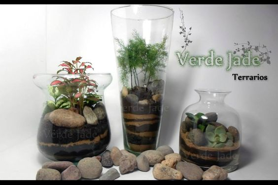 Terrarios Para mas información visitá nuestra web: www.VerdeJade.com Consultas: eve@verdejade.com Facebook: https://www.facebook.com/TerrariosVerdeJade