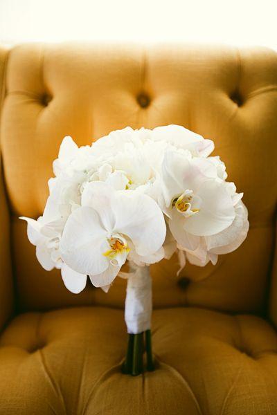crisp + clean white orchid bouquet   Pure 7 Studio #wedding
