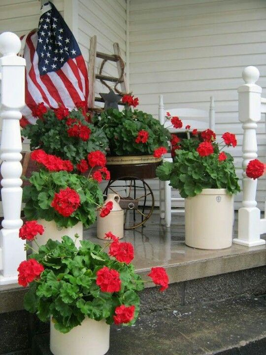 summer porch - potted red geraniums..stick to what you know and can grow.  simple would be pretty