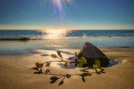 beach scenes by ralfpfaarphotography