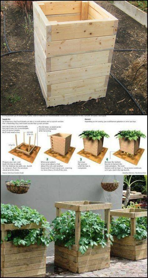 Wie Baut Man Eine Spud Box Und Wachst Auf Vier Quadratmetern Kartoffeln Growing Vegetables Garden Boxes Diy Raised Garden